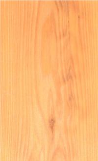 サイエンスホーム八戸|選べる木の色:ナチュラル