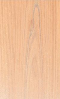 サイエンスホーム八戸|選べる木の色:ホワイト